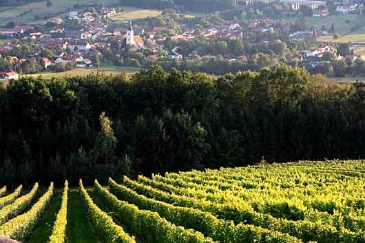 Kurort Bad Waltersdorf im Thermenland Steiermark